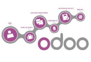 Desarrollo de Software Odoo Openerp crm