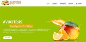 Web-Entwicklung Online-Shop Obst
