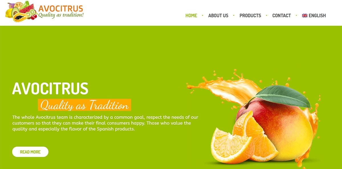 desarrollo web tienda online fruta