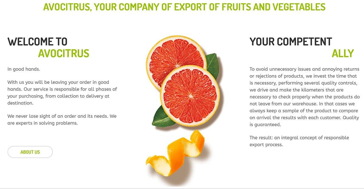 diseño web tienda de frutas