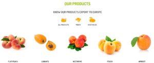ecommerce de frutas