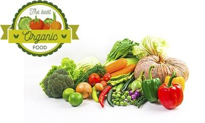 Ejemplos páginas web agricultura