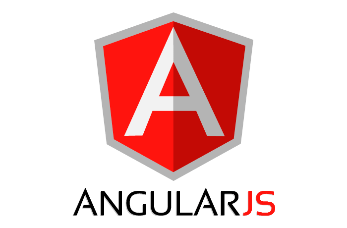 Remote Angular Developer
