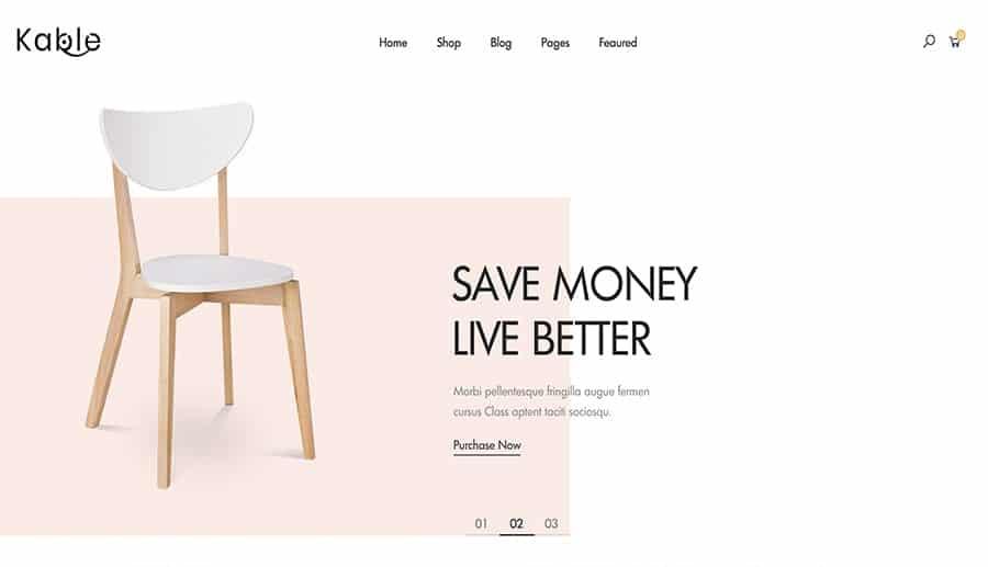 WordPress online store design