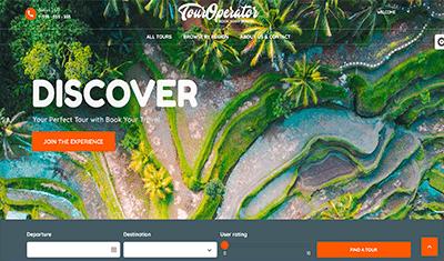 best web design for tours